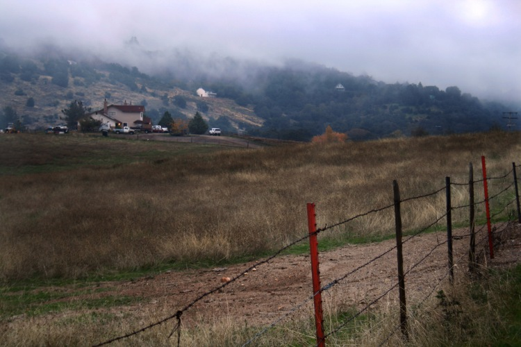 Fog rolling up the mountains in Julian, CA